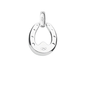 Lucky Horseshoe Charm-