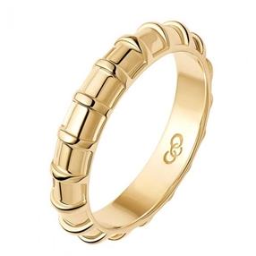 Brutalist Ασημένιο δαχτυλίδι με επιχρύσωση 18 καρατίων-